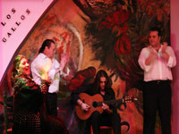 flamencotickets.com